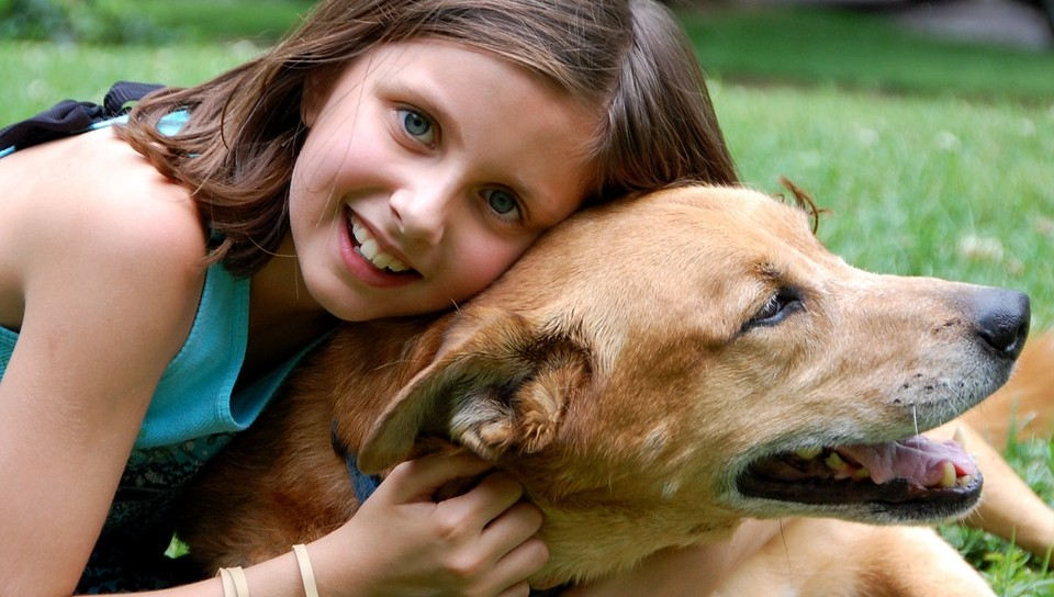 Keep Your Pets Safe During Tick Season
