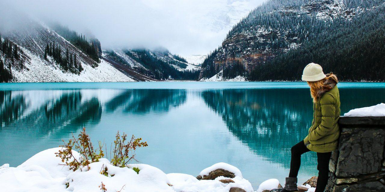 Banff Wildlife Tours Winter