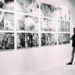 NEW GRACE COSSINGTON SMITH ART EXHIBITION