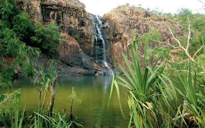Outback Odyssey: The Top End's Swimming Spots