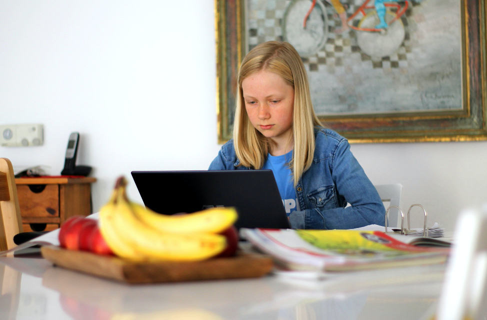 Distance Learning, a Parent's Nightmare