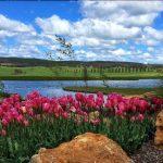 Beautiful Bathurst: Sydney Observer's Guide