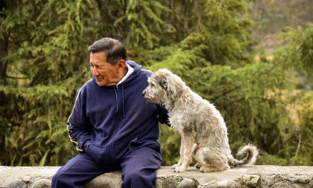 Seniors and Furry Friends