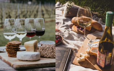 The Perfect Food & Wine Pairings