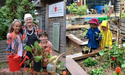 The Kitchen Garden Foundation – Food Education